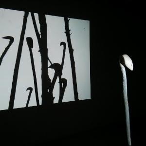 InstallationACMCM-Ombres